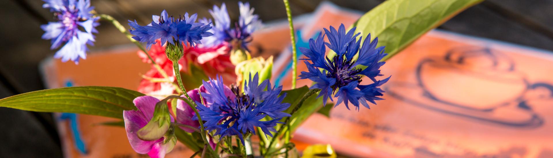 Kornblumen auf Cafétisch
